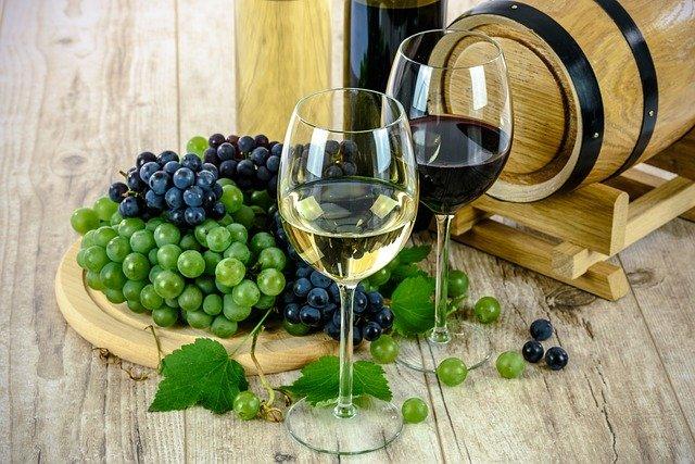 víno a hrozny.jpg
